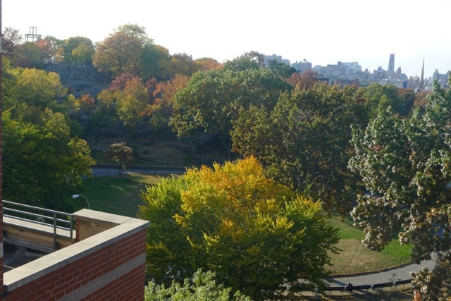 The view from a nearby balcony of Marcus Garvey Park Fall 2013